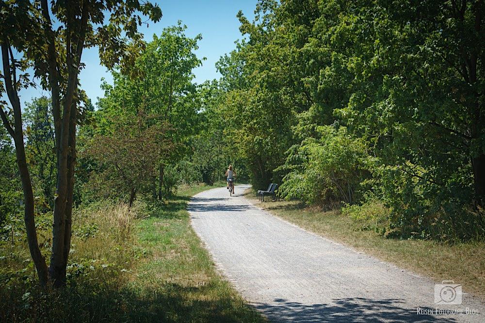 Ruhrtal Radweg 3 - MÜGA und Fossilienweg