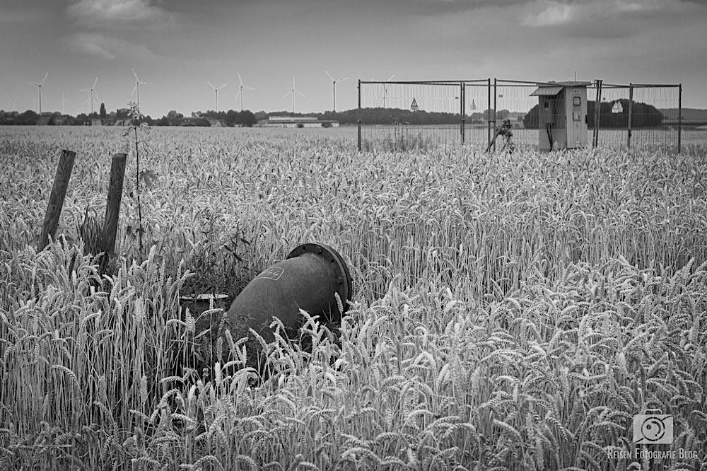 Felder in Lützerath mit den überall zu sehenden Grundwasserpumpen