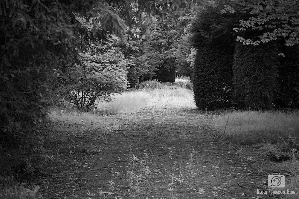 Friedhof Immerath