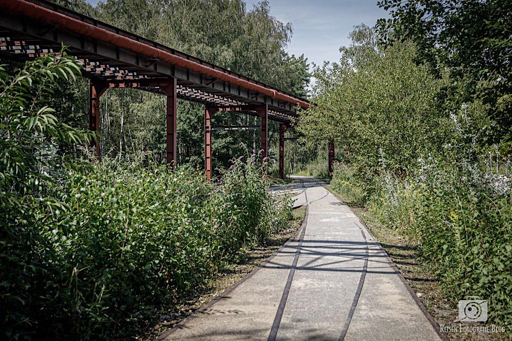 Wege über die alten Gleise