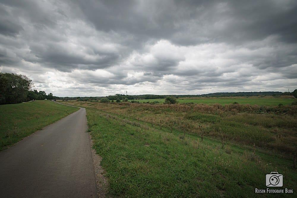 Radweg durch die Ruhrwiesen in Mülheim Styrum