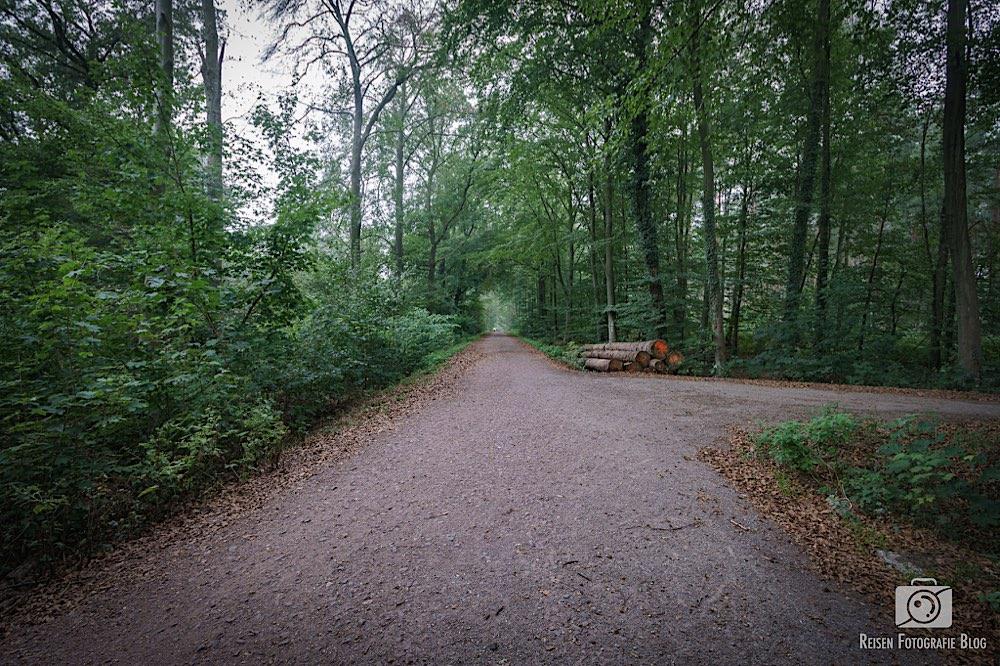 Rotbach Weg