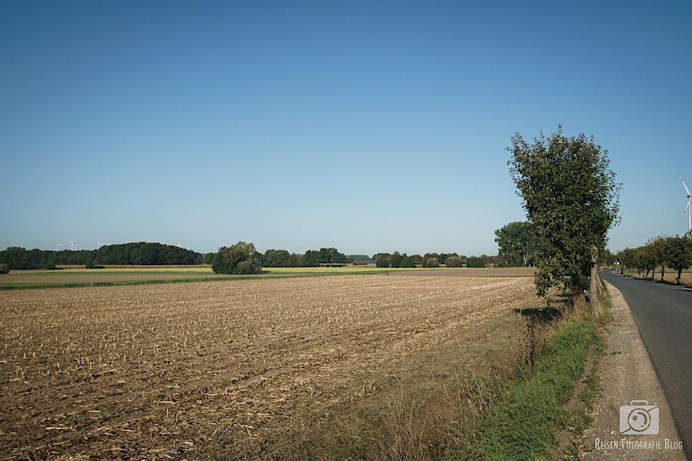 Noch mehr Felder
