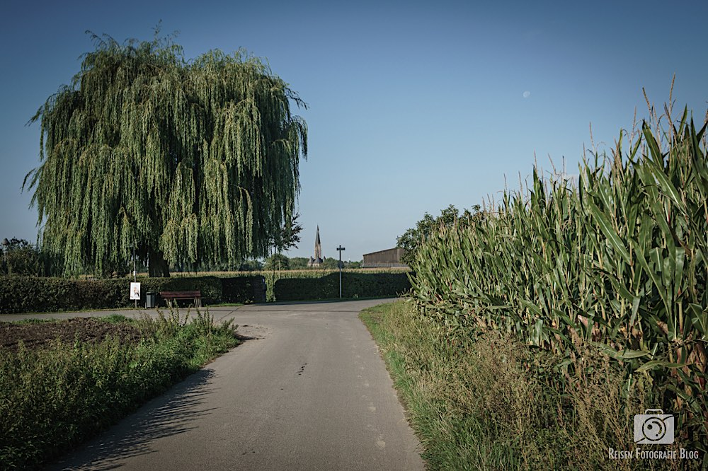 In den Feldern um Suderwich