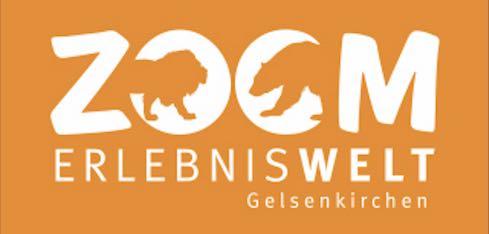 Logo Zoom
