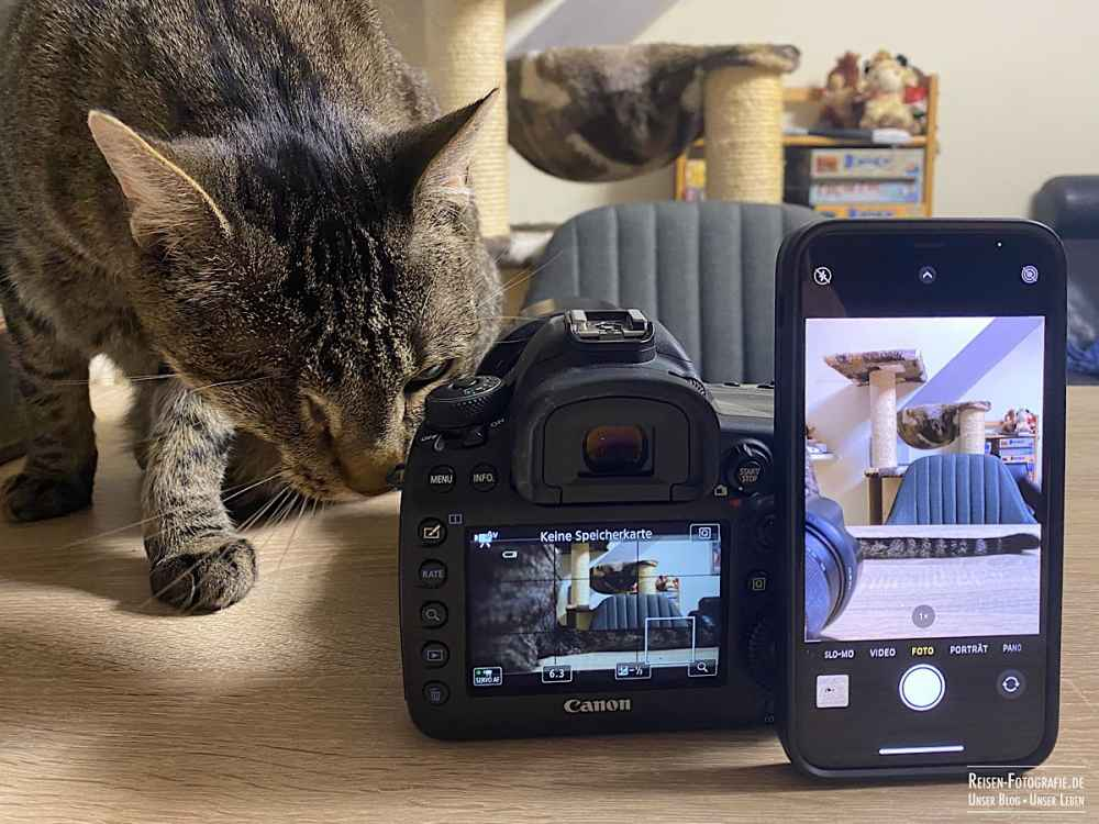 Claire mag die großen Kameras