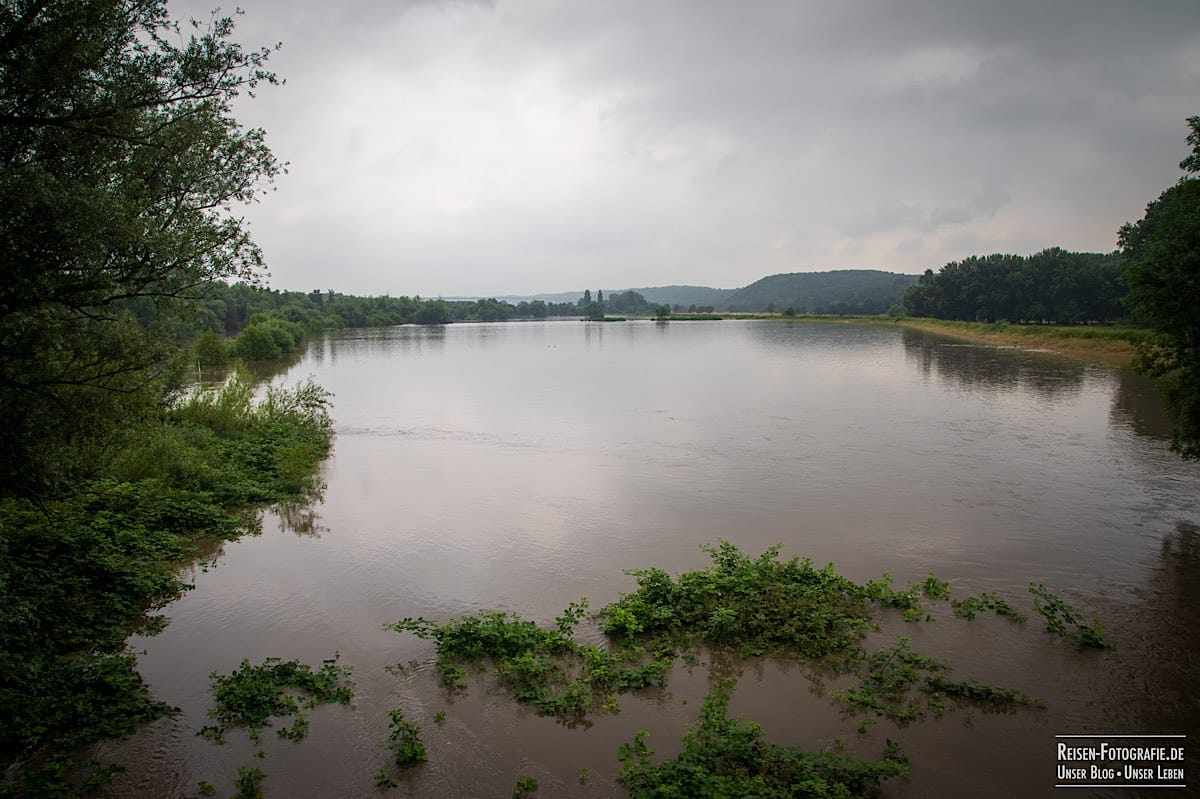 Hochwasser in den Ruhrwiesen