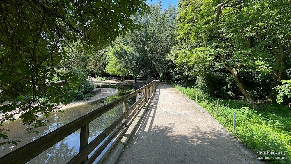 Viele grüne und schattige Wege im Zoo Krefeld